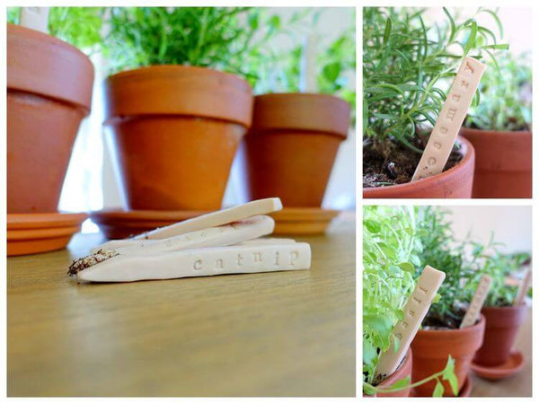 Plants with DIY clay markers