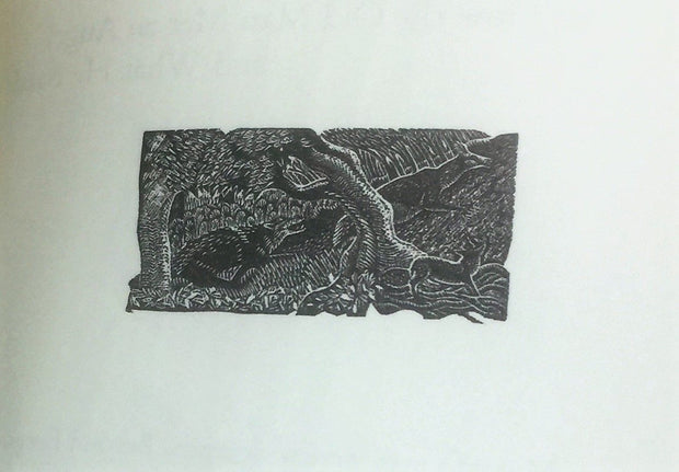 Alyson Macneill 23 Wood Engravings for The Song of the Forest