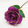 Bijoux Medusa | Article Divers Forever Golden Rose 24K Purple