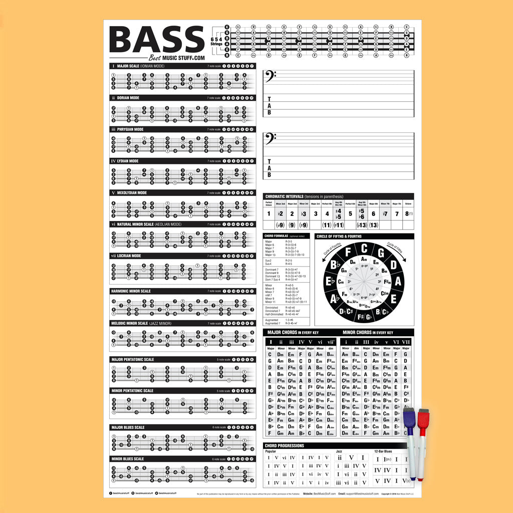 The Creative Bass Poster (Dry-Erase) 24\
