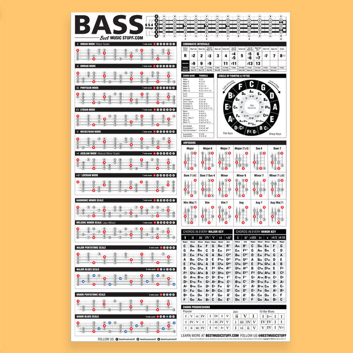 The Essential Bass Theory Reference Poster