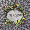 Limited Edition - Imagine