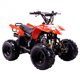 COOLSTER 3050B 110CC KIDS ATV,AUTOMATIC WITHOUT REVERSE, 16