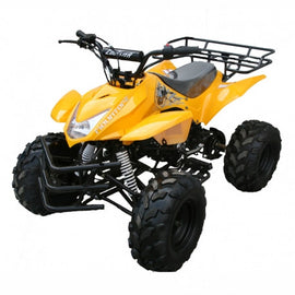 "Coolster 3125A 125cc Kids ATV,Automatic Transmission with Reverse, 19""/18"" Tires, Air Cooled"