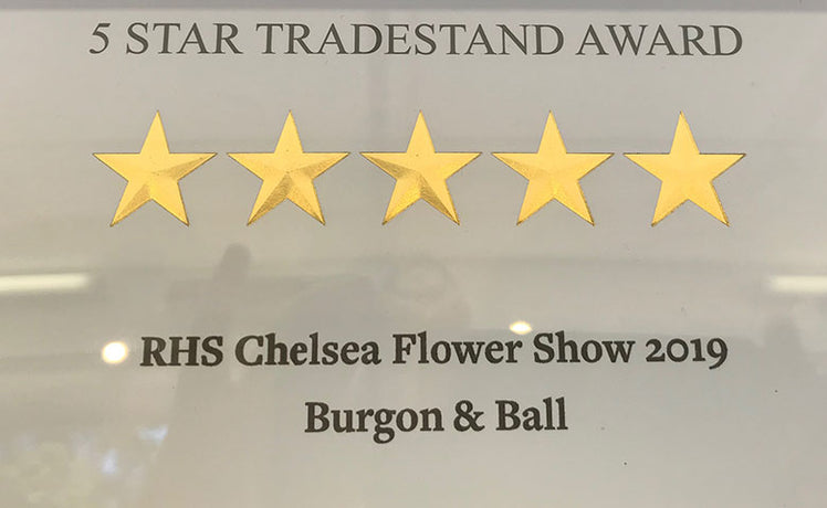 Five stars for our Chelsea stand