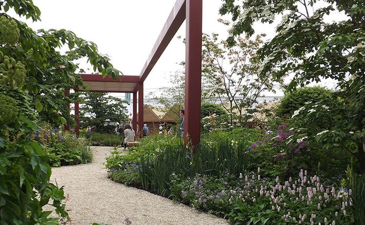 Postcards from Chelsea Part 4: a new RHS garden
