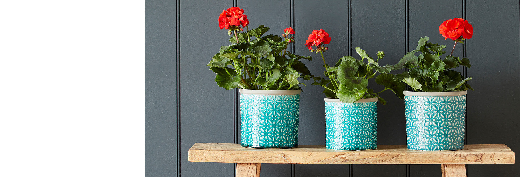 Indoor Pots & Vases | Burgon & Ball – Burgon and Ball on house plants in containers, tropical plants in vases, house plants in kitchen, green plants in vases, aquatic plants in vases, growing plants in vases, fake plants in vases, water plants in vases,