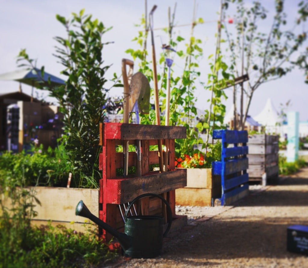 An upcycled pallet makes a handy tool rack in Eds' community garden