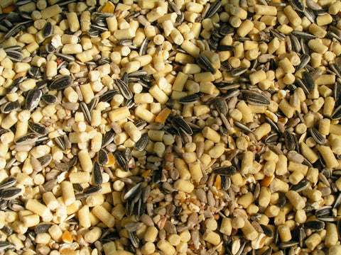 A good-quality seed mix with suet pellets