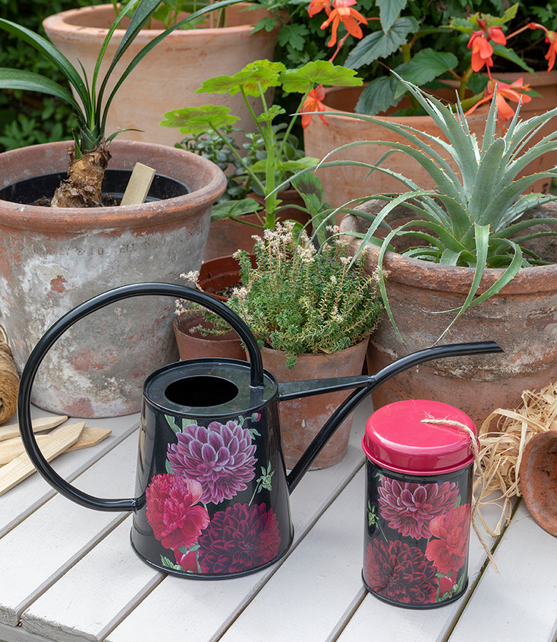 RHS Gifts for Gardeners