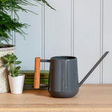 Indoor watering can by Burgon & Ball - charcoal. Succulent can.