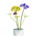 Fuji Japanese flower arranging bowl by Burgon & Ball