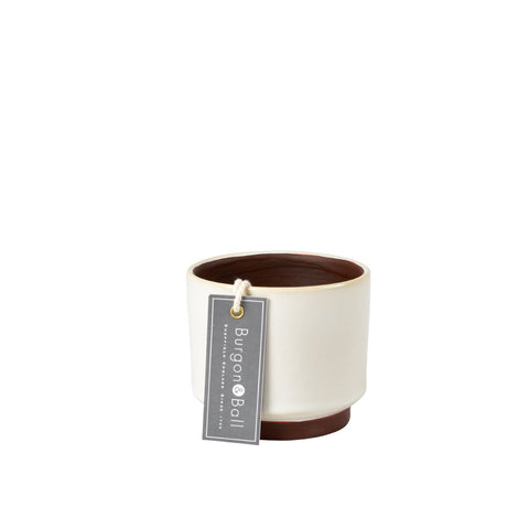 Malibu cream succulent pot by Burgon & Ball