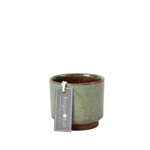 Malibu green succulent pot by Burgon & Ball