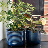 Oslo glazed indoor plant pot (small blue) by Burgon & Ball