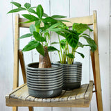Oslo glazed indoor plant pot (small grey) by Burgon & Ball