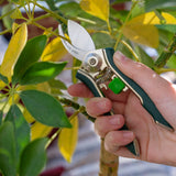 Houseplant pruner by Burgon & Ball