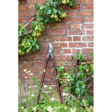 National Trust made by Burgon & Ball garden lopper