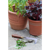 National Trust made by Burgon & Ball patio weeding knife