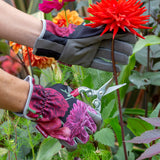 British Bloom Gloves
