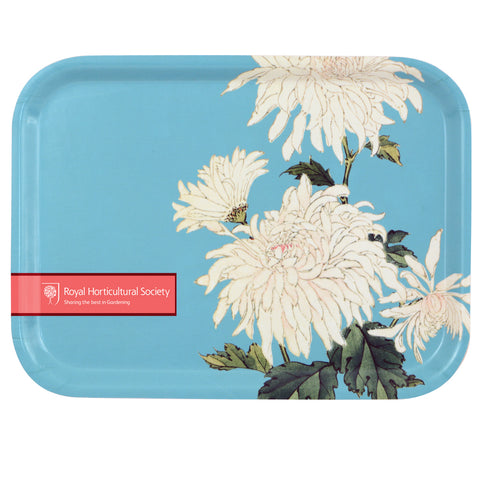 Chrysanthemum Tray