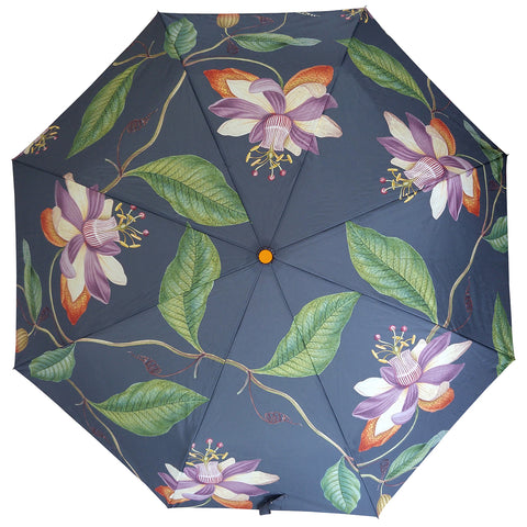 Passiflora Compact Umbrella
