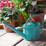 Sophie Conran Greenhouse & Indoor Watering Can - Sea Green