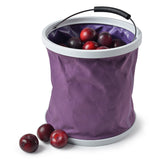 Plum Bucket ina Bag
