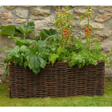 Vegetable and Tomato Planter