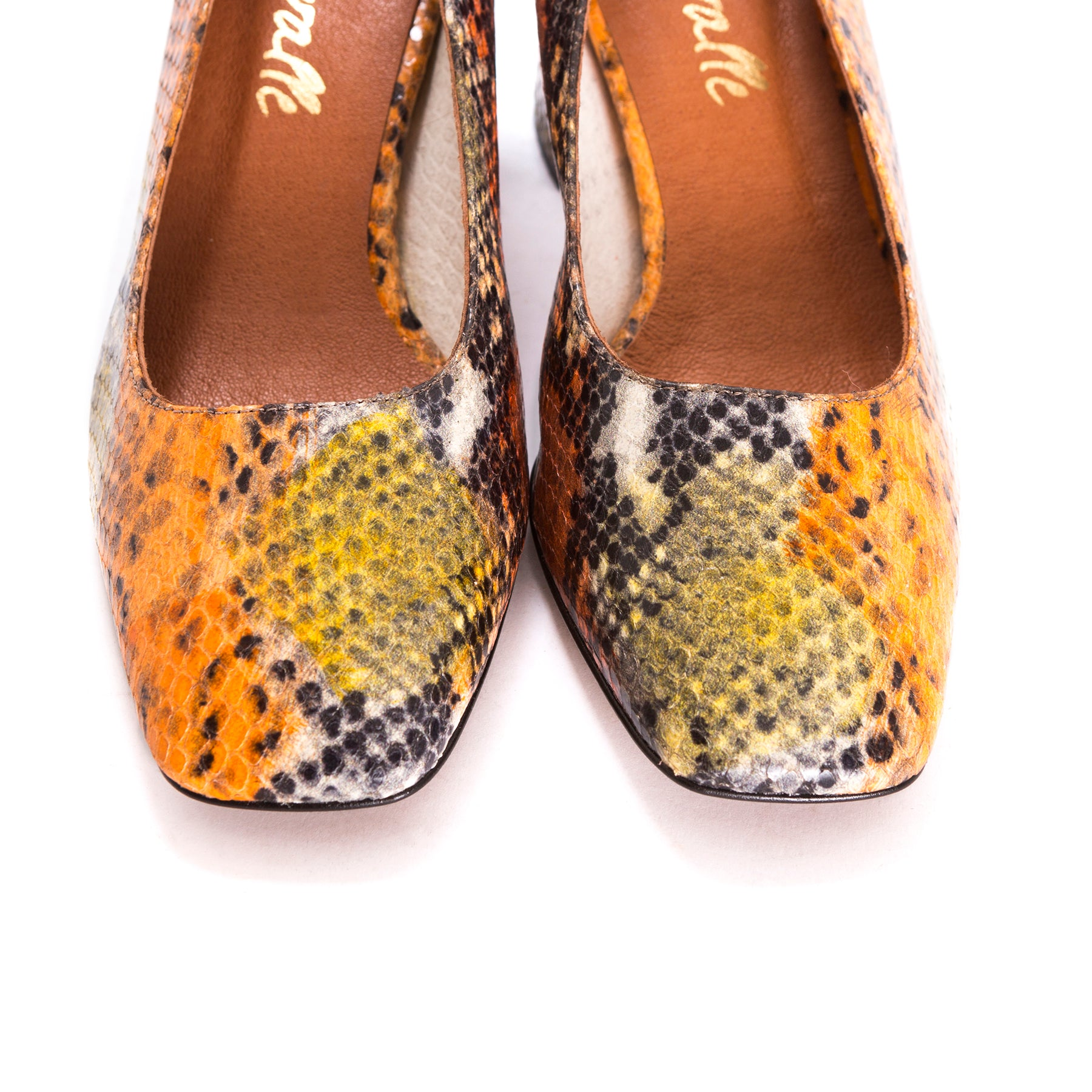 Rupie Multi Snake Pumps