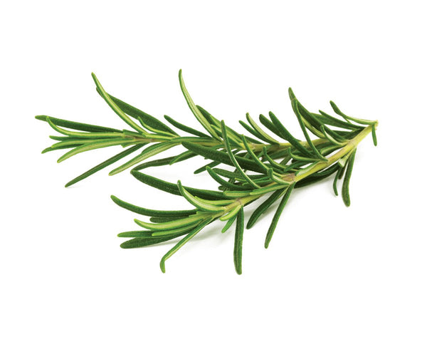 Go Fresh Rosemary 40 G Ea