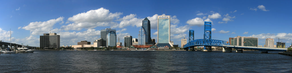 PANORAMIC VIEW OF JACKSONVILLE, FL