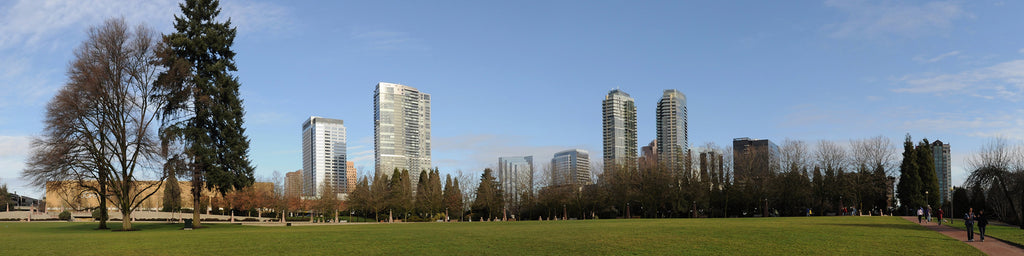 BELLEVUE, WA SKYLINE