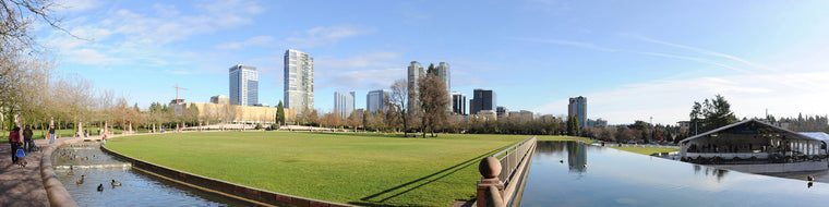BELLEVUE PANORAMIC FROM DOWNTOWN PARK