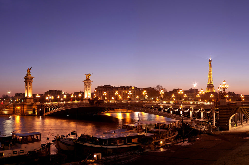 The Alexandre III Bridge, Paris