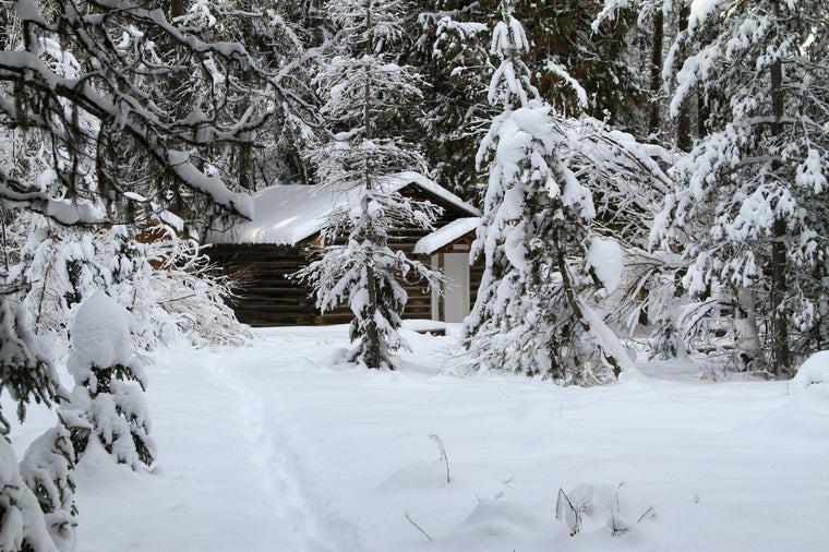 Hidden Winter Cabin