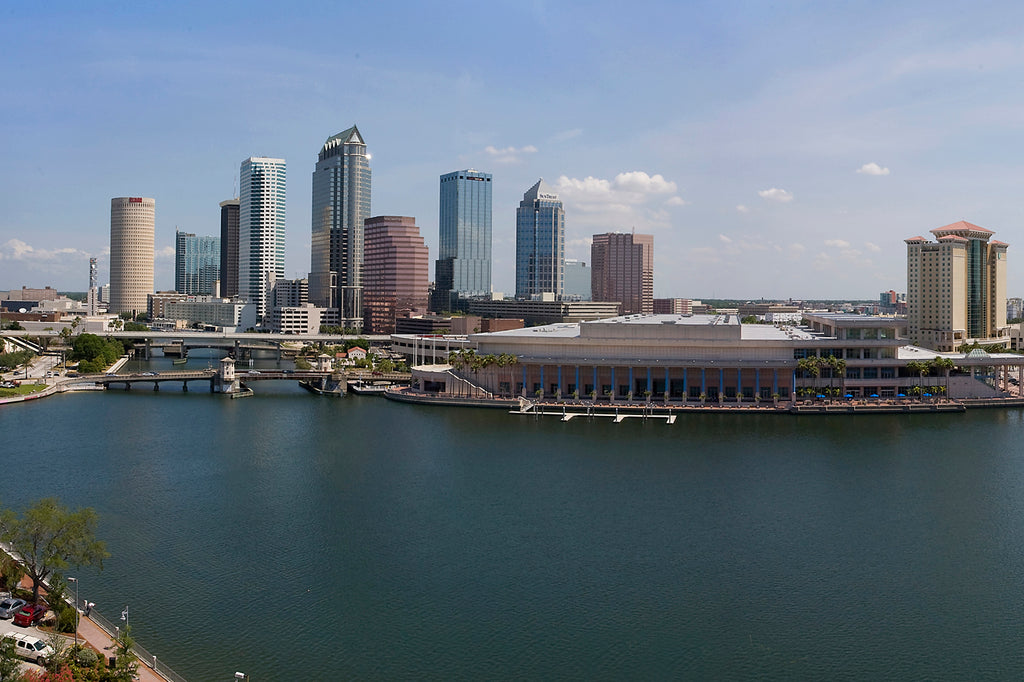 Tampa Skyline at Day