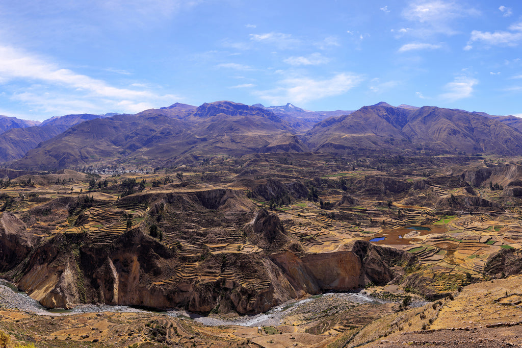 Ancient Terraces of Colca Valley, Peru