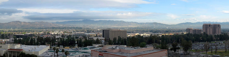 SAN FERNANDO VALLEY AND WOODLAND HILLS