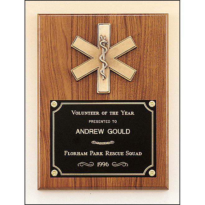 Emergency medical award with antique bronze finish casting.