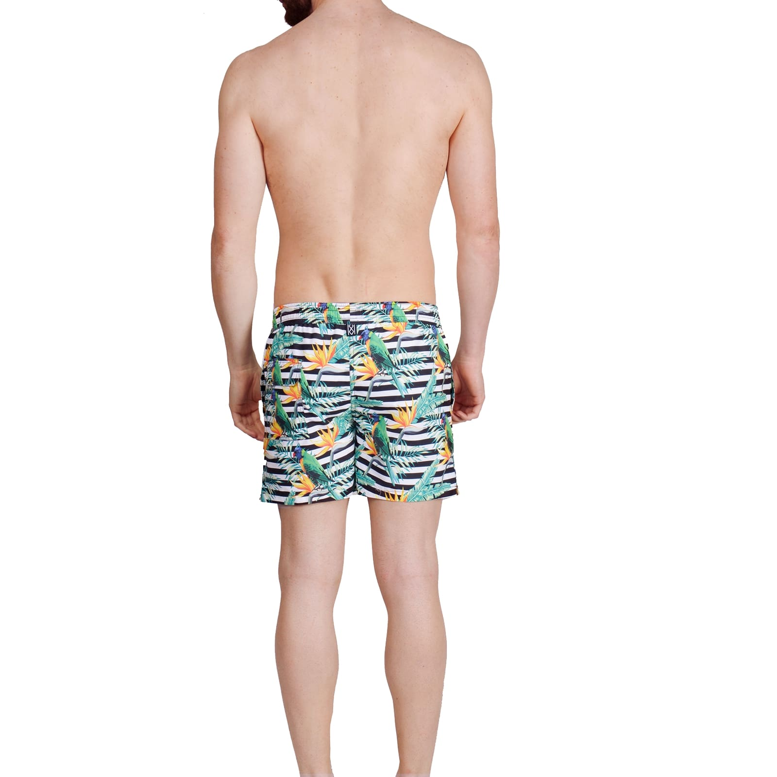 Parrots Swim Shorts - kloters