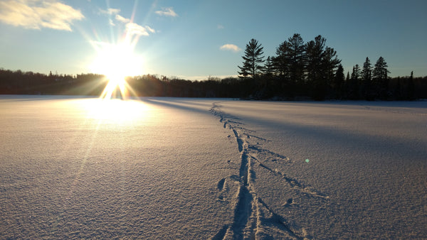 How the People of Ely, Minnesota Taught Me to Love Winter