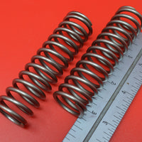 FM-100 FLYING MERKEL VALVE SPRINGS 1910 +