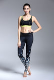 Small Butterfly Yoga Leggings