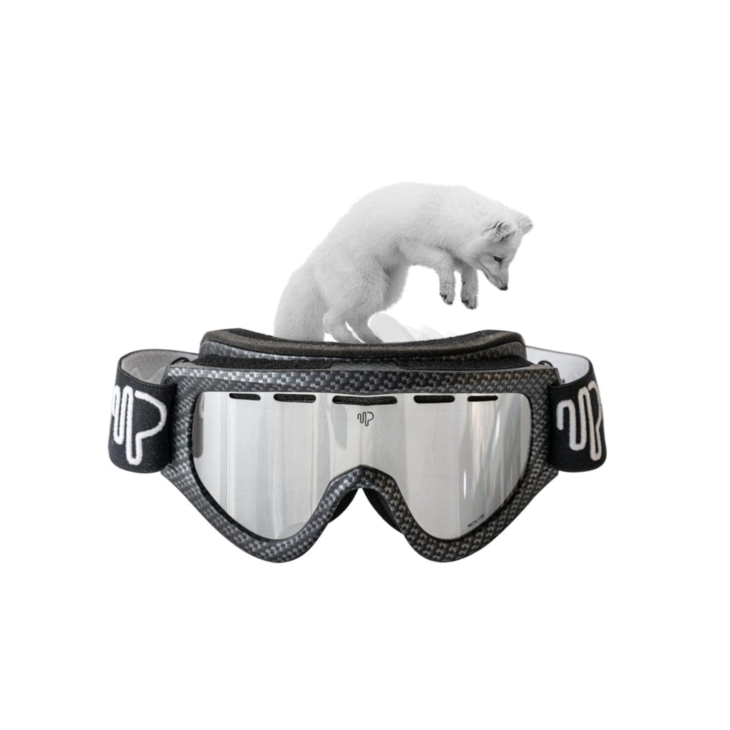 Pulse GOGGLES ARCTIC FOX Buy Best Polarized Goggles | ARCTIC FOX