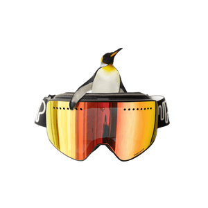 PULSE GOGGLES EMPEROR PINGUIN Buy Best Magnetic Lens Ski Goggles | EMPEROR PINGUIN