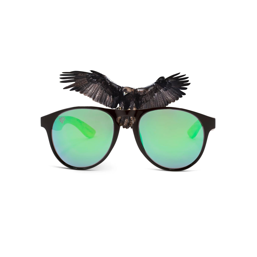 PULSE SUNGLASSES IMPERIAL EAGLE  Best for Buy | Modern High-Quality Glasses | IMPERIAL EAGLE