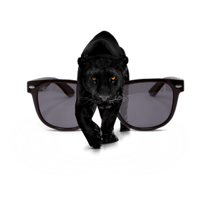 PULSE SUNGLASSES PANTHER Best Online Eyeglasses Store to Buy Smoked Black Sunglasses | PANTHER