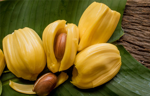 Jackfruit leaves – Health benefits