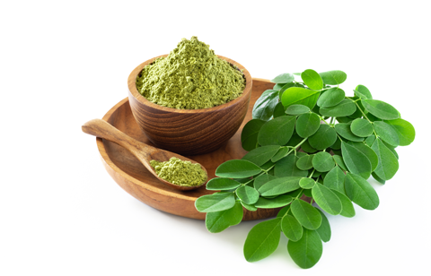 The new super food Moringa